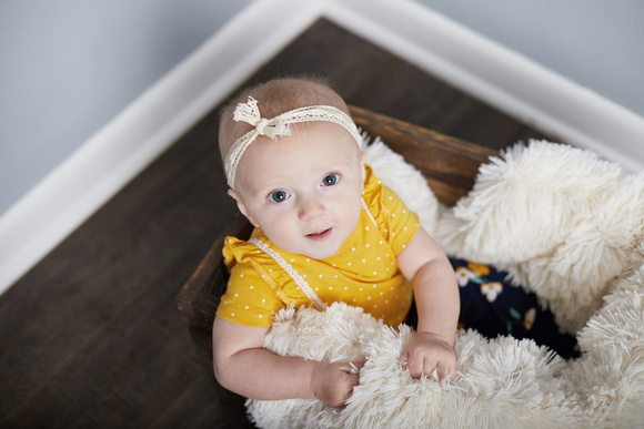 Nora 6 months by Rachel Wilhelm Photography  (3)